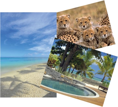 Choose your honeymoon from a wide range of exotic destinations